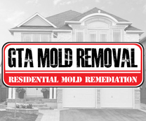 GTA Mold Removal Mississauga